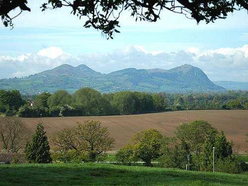 Breidden-hills-sh1