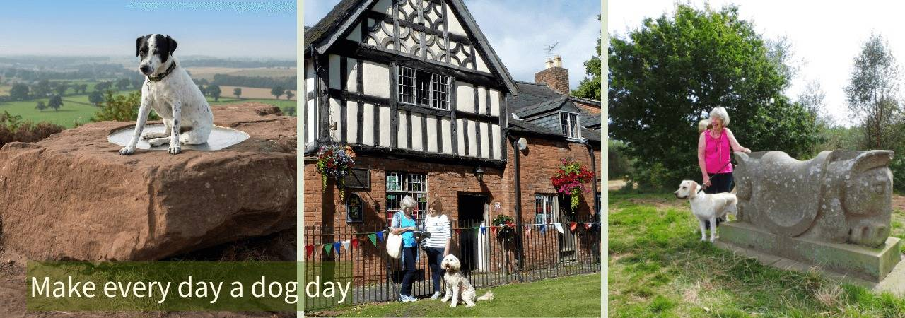 Dog friendly, Oswestry & The Borderlands